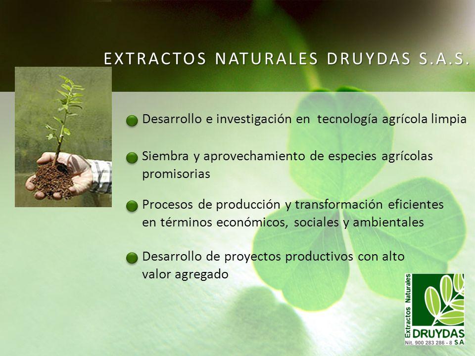 Siembra y aprovechamiento de especies agrícolas promisorias Desarrollo e investigación en tecnología agrícola limpia Procesos de producción y transfor