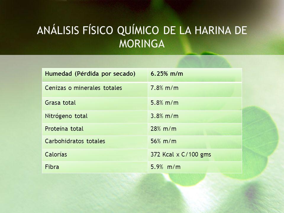 ANÁLISIS FÍSICO QUÍMICO DE LA HARINA DE MORINGA Humedad (Pérdida por secado)6.25% m/m Cenizas o minerales totales7.8% m/m Grasa total5.8% m/m Nitrógen