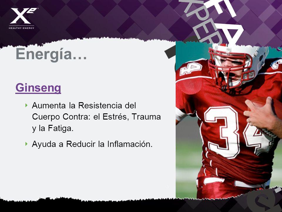 Energía… Ginseng Aumenta la Resistencia del Cuerpo Contra: el Estrés, Trauma y la Fatiga. Ayuda a Reducir la Inflamación.