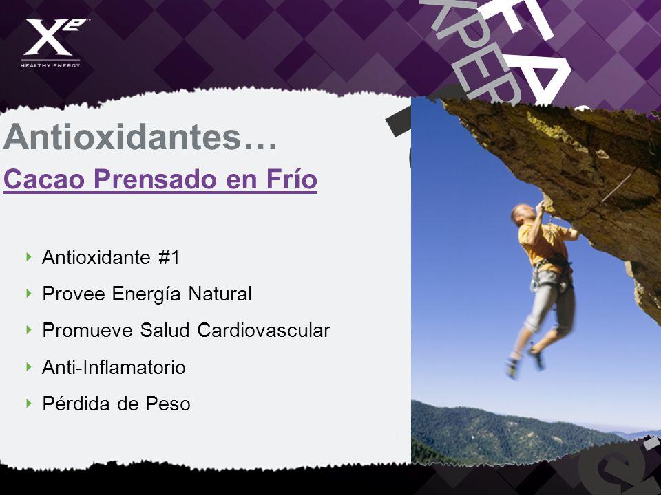 Antioxidantes… Cacao Prensado en Frío Antioxidante #1 Provee Energía Natural Promueve Salud Cardiovascular Anti-Inflamatorio Pérdida de Peso