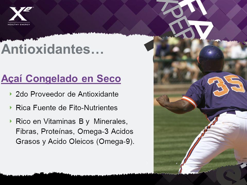 Antioxidantes… Açaí Congelado en Seco 2do Proveedor de Antioxidante Rica Fuente de Fito-Nutrientes Rico en Vitaminas B y Minerales, Fibras, Proteínas,