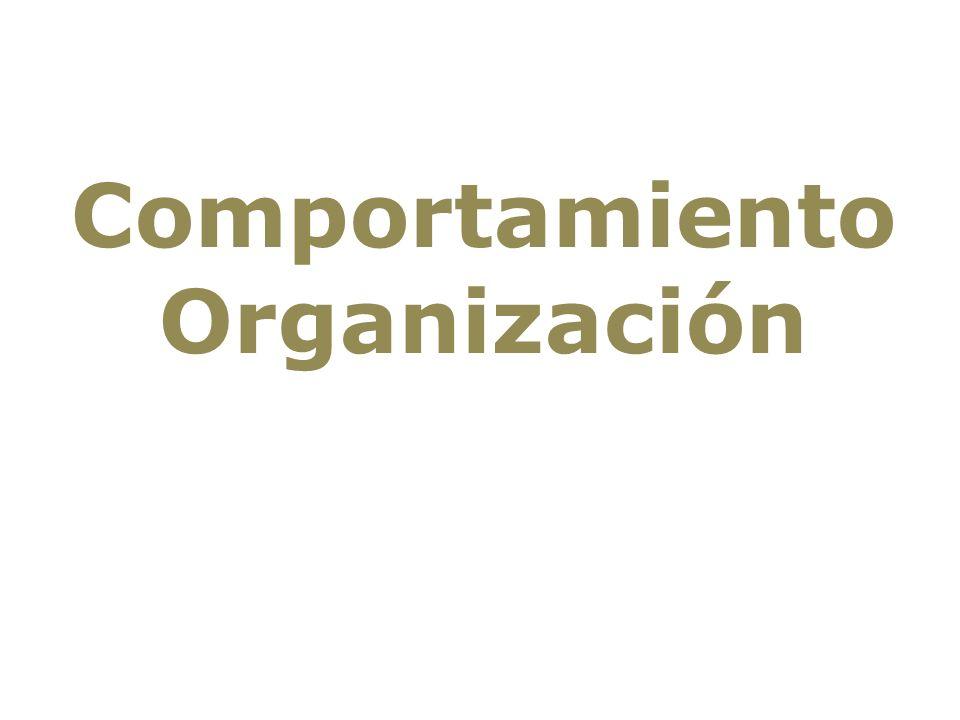 Comportamiento Organización