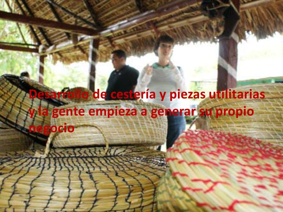Desarrollo de cestería y piezas utilitarias y la gente empieza a generar su propio negocio