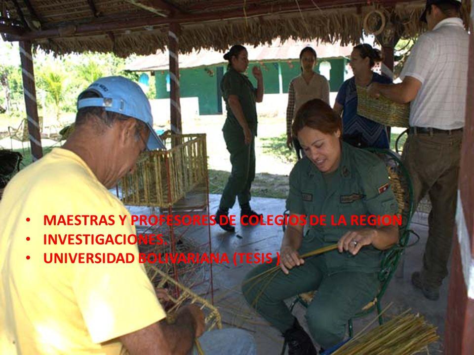 MAESTRAS Y PROFESORES DE COLEGIOS DE LA REGION INVESTIGACIONES. UNIVERSIDAD BOLIVARIANA (TESIS )