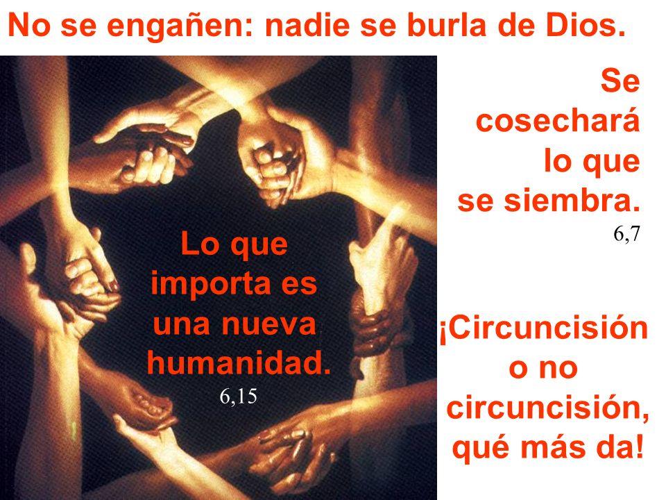 No se engañen: nadie se burla de Dios. Lo que importa es una nueva humanidad. 6,15 Se cosechará lo que se siembra. 6,7 ¡Circuncisión o no circuncisión