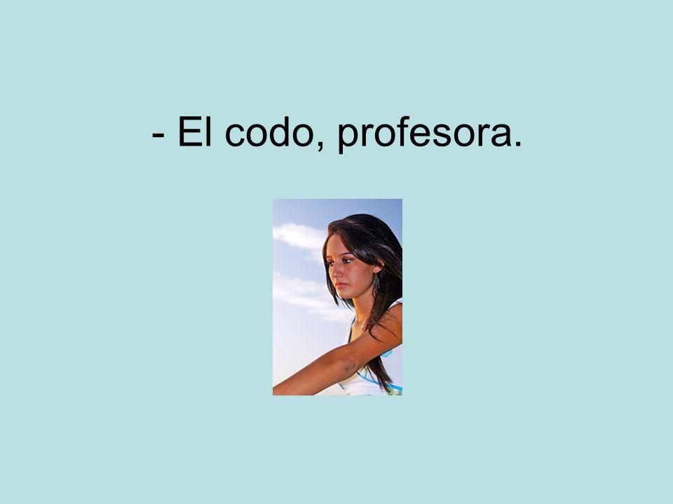 - El codo, profesora.