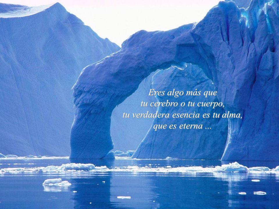 La felicidad es interior, no exterior; por lo tanto, no depende de lo que tenemos, sino de lo que somos...