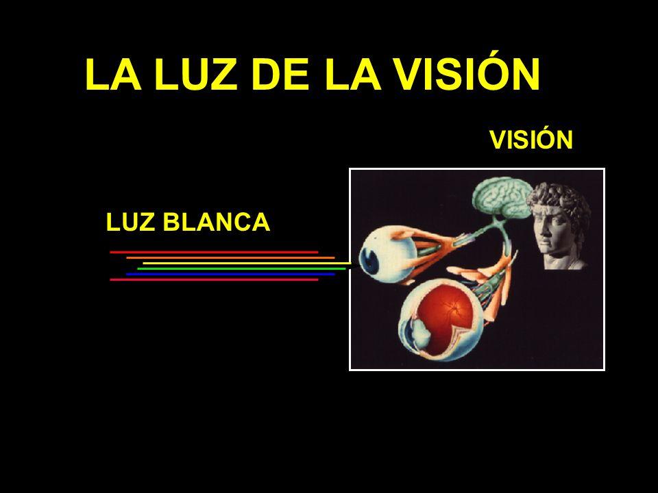 LA LUZ DE LA VISIÓN LUZ BLANCA VISIÓN