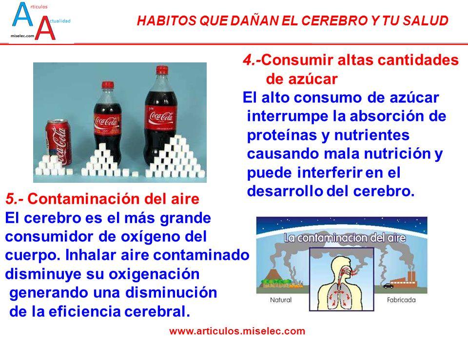 HABITOS QUE DAÑAN EL CEREBRO Y TU SALUD www.articulos.miselec.com 4.-Consumir altas cantidades de azúcar El alto consumo de azúcar interrumpe la absor