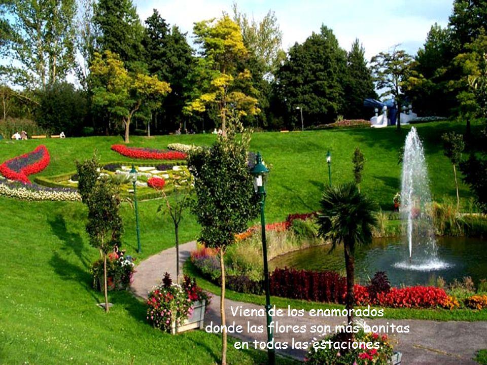 La bella Viena, de los palacios y castillos, del lindo rio Danubio que corta la ciudada, de la musica, del arte que aqui imperan. La bella Viena, de l
