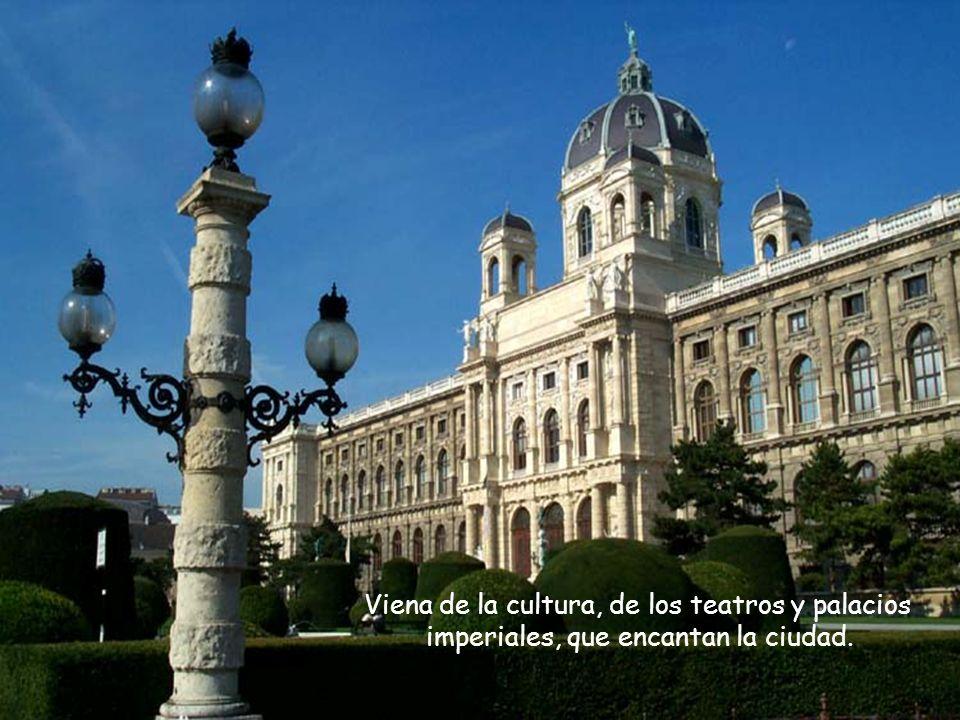Viena de la cultura, de los teatros y palacios imperiales, que encantan la ciudad.