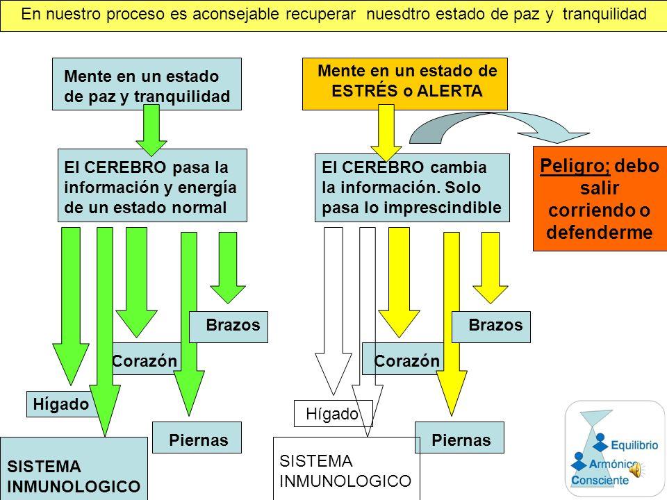 La LONGITUD CELULAR no se tiene en cuenta en los sistemas de diagnósticos médicos actuales, por ello el diagnostico podría ser incompleto o incorrecto