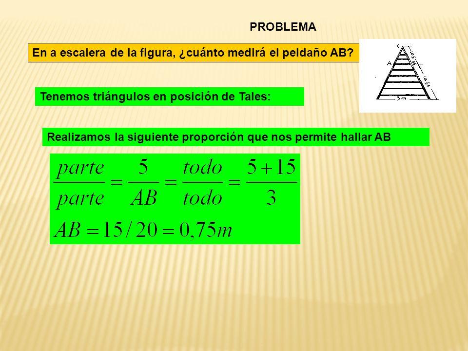 PROBLEMA En a escalera de la figura, ¿cuánto medirá el peldaño AB? Tenemos triángulos en posición de Tales: Realizamos la siguiente proporción que nos