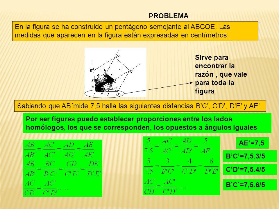 PROBLEMA En la figura se ha construido un pentágono semejante al ABCOE. Las medidas que aparecen en la figura están expresadas en centímetros. Sabiend