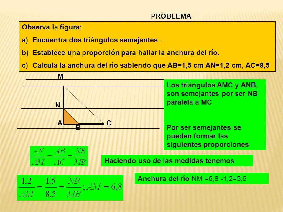 Observa la figura: a)Encuentra dos triángulos semejantes. b)Establece una proporción para hallar la anchura del río. c)Calcula la anchura del río sabi