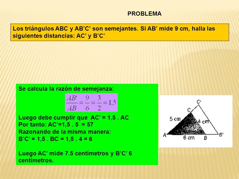 PROBLEMA Los triángulos ABC y ABC son semejantes. Si AB mide 9 cm, halla las siguientes distancias: AC y BC Se calcula la razón de semejanza: Luego de