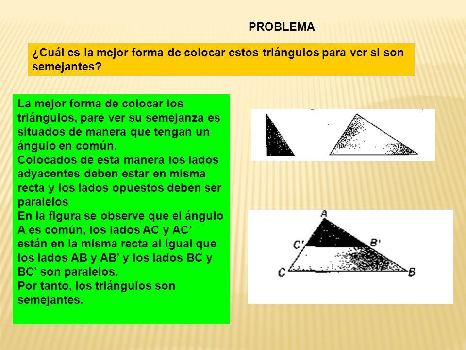 PROBLEMA ¿Cuál es la mejor forma de colocar estos triángulos para ver si son semejantes? La mejor forma de colocar los triángulos, pare ver su semejan
