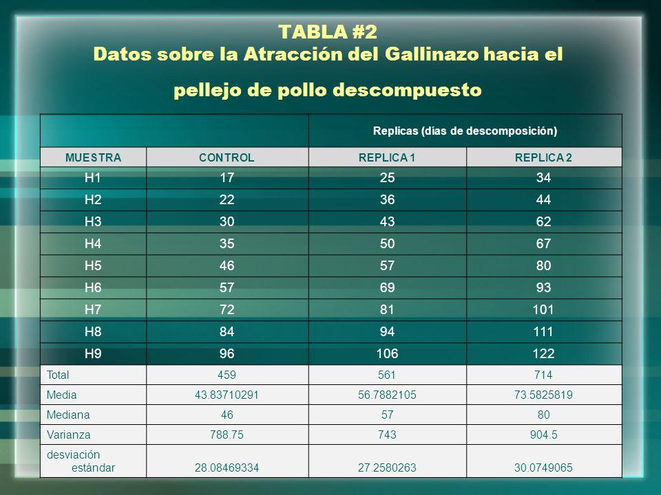 TABLA #2 Datos sobre la Atracción del Gallinazo hacia el pellejo de pollo descompuesto Replicas (días de descomposición) MUESTRACONTROLREPLICA 1REPLIC