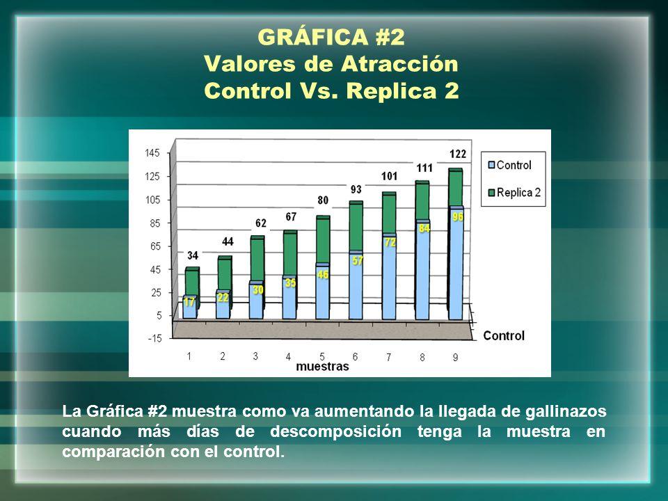GRÁFICA #3 Valores de Atracción obtenido entre replicas La gráfica #3 muestra una comparación entre la replica 1 y la replica 2 donde podemos ver claramente como el gallinazo siente mas atracción hacia las muestras más descompuestas.