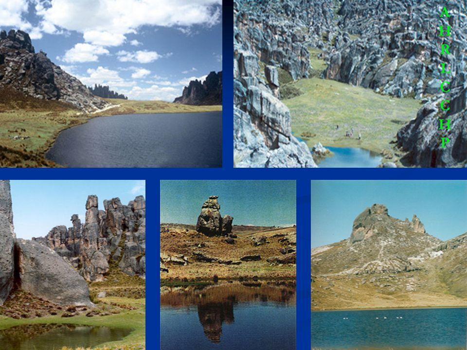 TERCERO Cuenta con una reserva natural alto andina intacta de flora y fauna, ríos y lagos Microambientales; cuenta con una variedad de microclimas por