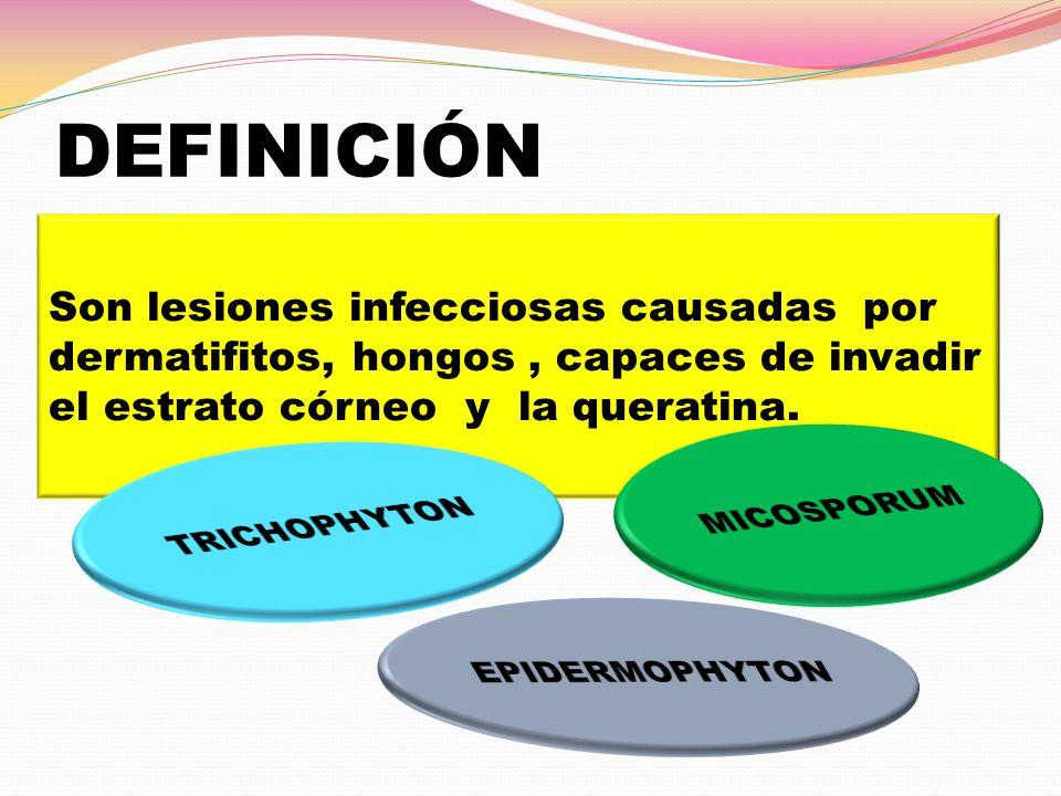 DEFINICIÓN Son lesiones infecciosas causadas por dermatifitos, hongos, capaces de invadir el estrato córneo y la queratina.