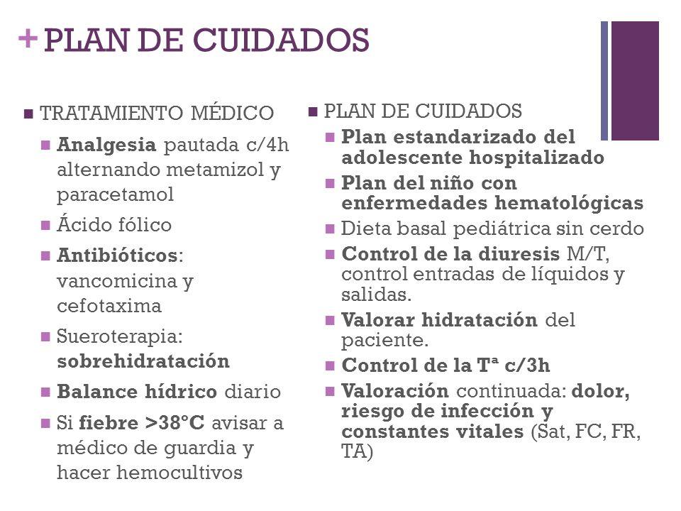 + PLAN DE CUIDADOS TRATAMIENTO MÉDICO Analgesia pautada c/4h alternando metamizol y paracetamol Ácido fólico Antibióticos: vancomicina y cefotaxima Su