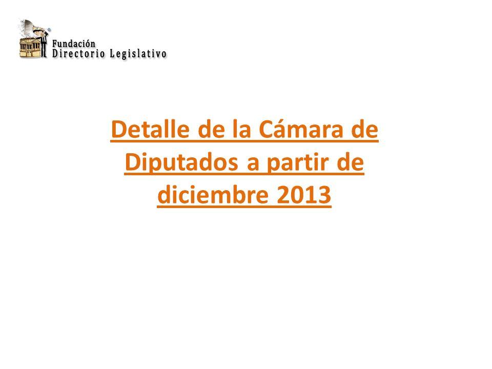 Detalle de la Cámara de Diputados a partir de diciembre 2013