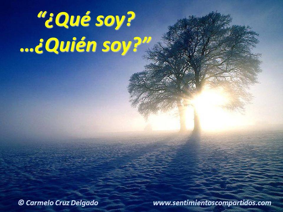 24(c) carMELOS Cruz Delgado Ciencia y Espiritualidad ¿Qué soy.