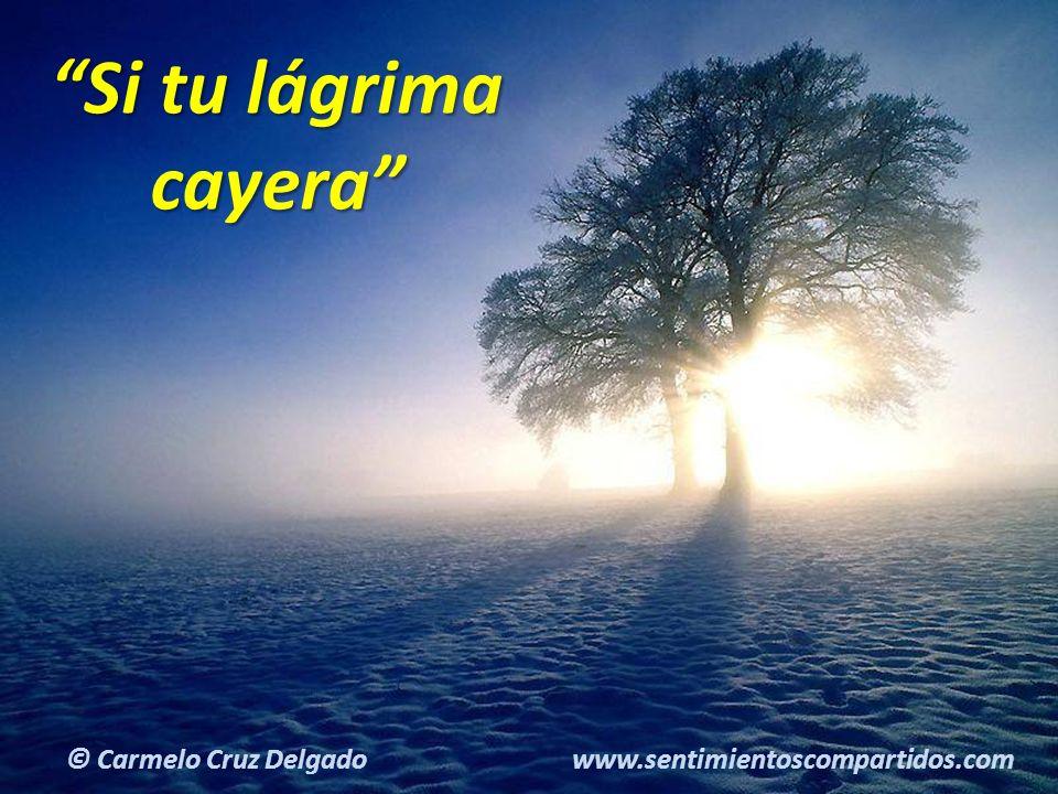 6(c) carMELOS Cruz Delgado Ciencia y Espiritualidad Si tu lágrima cayera © Carmelo Cruz Delgado www.sentimientoscompartidos.com