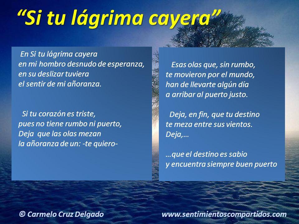 7(c) carMELOS Cruz Delgado Ciencia y Espiritualidad © Carmelo Cruz Delgado www.sentimientoscompartidos.com En Si tu lágrima cayera en mi hombro desnudo de esperanza, en su deslizar tuviera el sentir de mi añoranza.