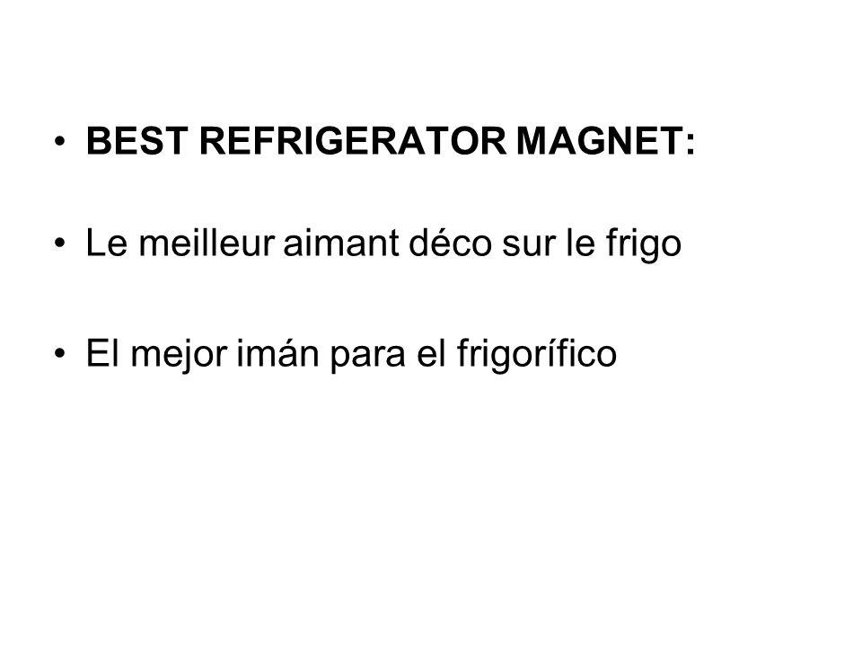 BEST REFRIGERATOR MAGNET: Le meilleur aimant déco sur le frigo El mejor imán para el frigorífico