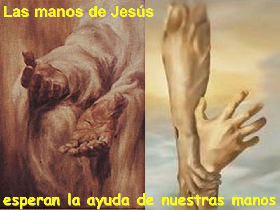 esperan la ayuda de nuestras manos Las manos de Jesús