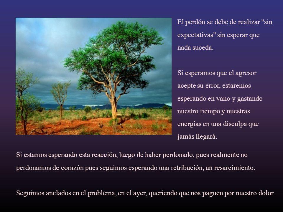 El perdón se debe de realizar sin expectativas sin esperar que nada suceda.