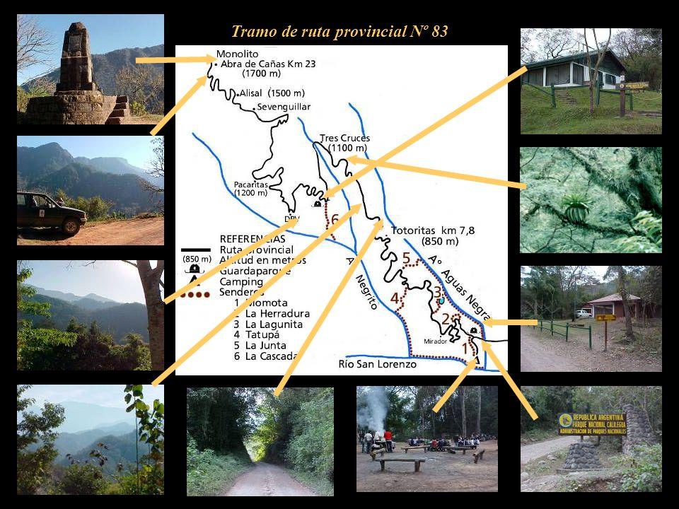Tramo de ruta provincial Nº 83