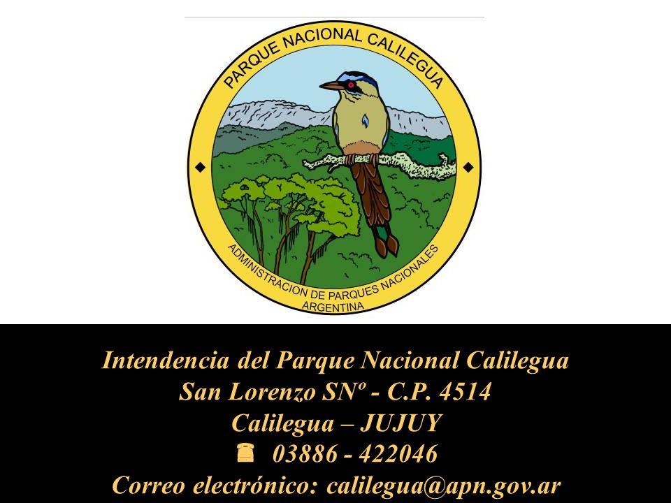 Intendencia del Parque Nacional Calilegua San Lorenzo SNº - C.P.
