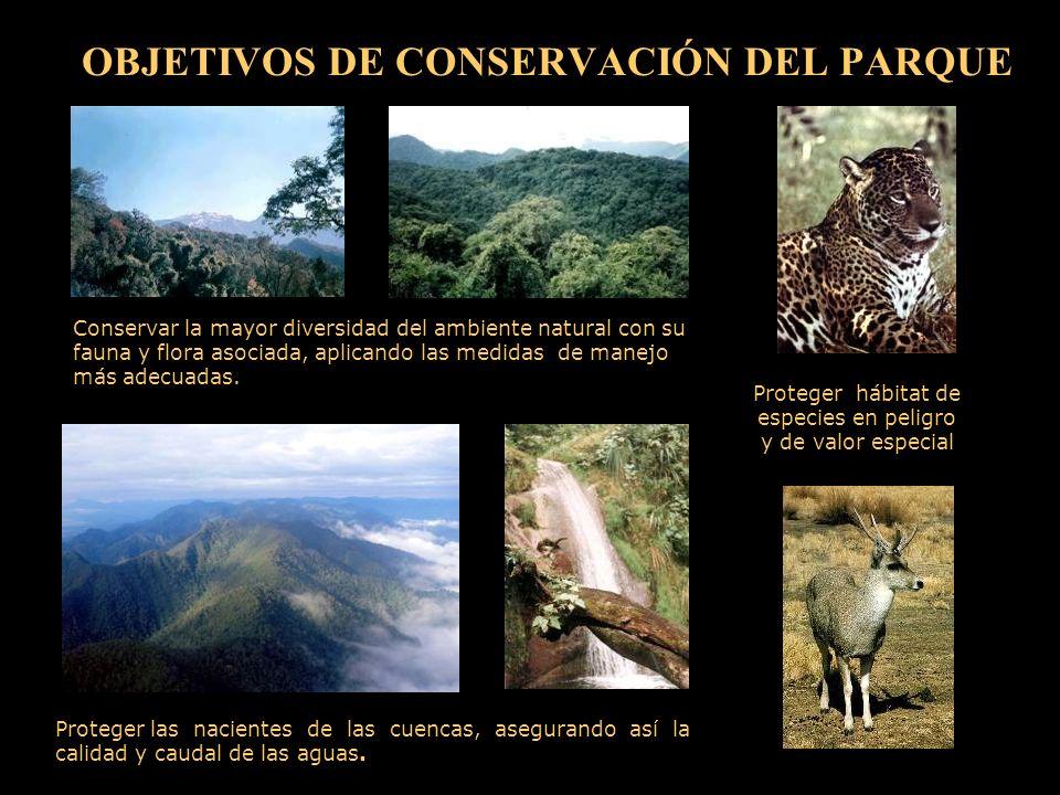 OBJETIVOS DE CONSERVACIÓN DEL PARQUE Proteger las nacientes de las cuencas, asegurando así la calidad y caudal de las aguas.