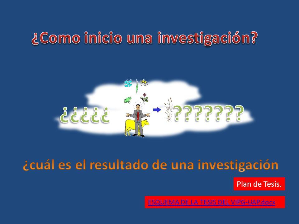 Plan de Tesis. ESQUEMA DE LA TESIS DEL VIPG-UAP.docx