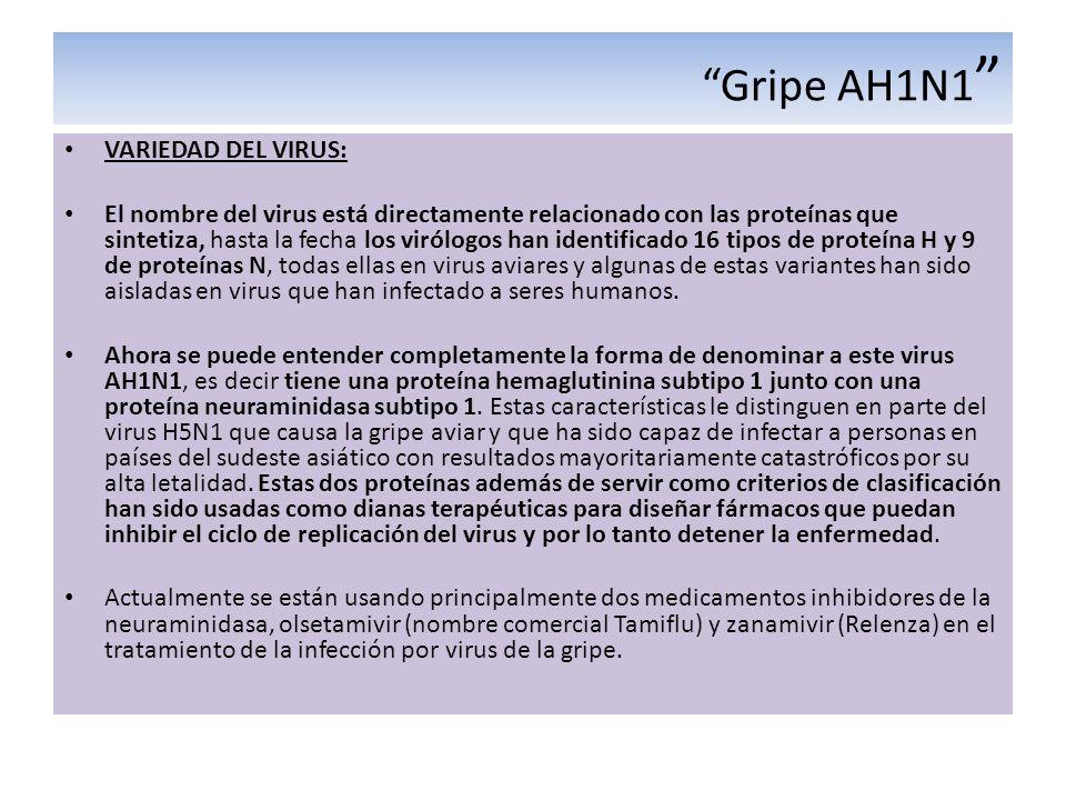 Gripe AH1N1 VARIEDAD DEL VIRUS: El nombre del virus está directamente relacionado con las proteínas que sintetiza, hasta la fecha los virólogos han id