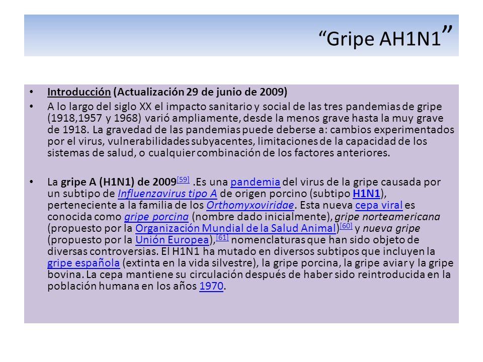 Gripe AH1N1 Introducción (Actualización 29 de junio de 2009) A lo largo del siglo XX el impacto sanitario y social de las tres pandemias de gripe (191