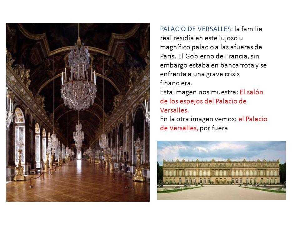 PALACIO DE VERSALLES: la familia real residía en este lujoso u magnífico palacio a las afueras de París. El Gobierno de Francia, sin embargo estaba en