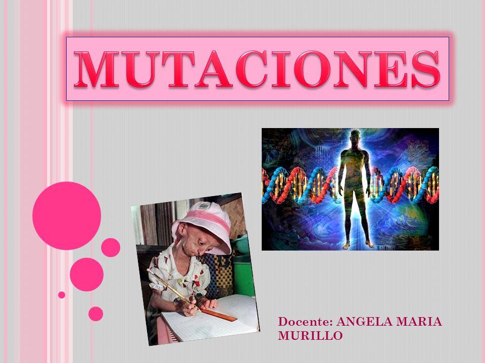 Docente: ANGELA MARIA MURILLO