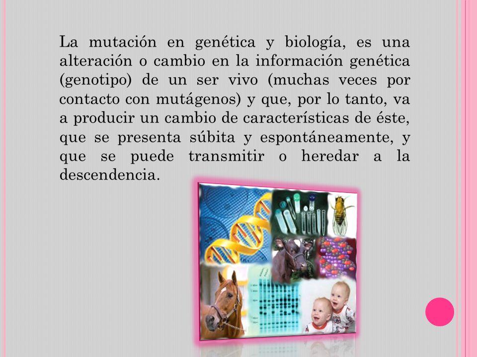 La mutación en genética y biología, es una alteración o cambio en la información genética (genotipo) de un ser vivo (muchas veces por contacto con mut
