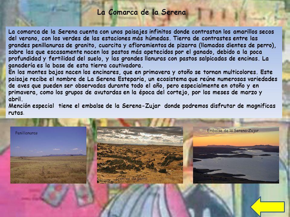 La comarca de la Serena cuenta con unos paisajes infinitos donde contrastan los amarillos secos del verano, con los verdes de las estaciones más húmedas.