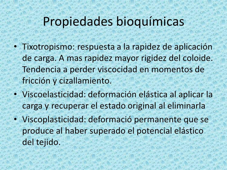 Propiedades bioquímicas Tixotropismo: respuesta a la rapidez de aplicación de carga. A mas rapidez mayor rigidez del coloide. Tendencia a perder visco