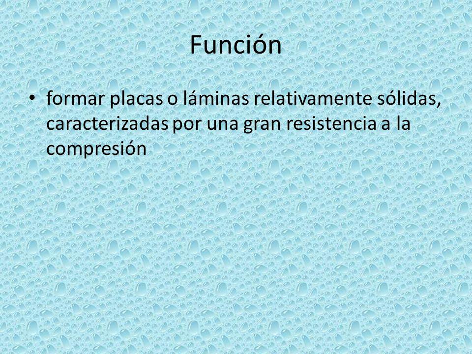 Función formar placas o láminas relativamente sólidas, caracterizadas por una gran resistencia a la compresión