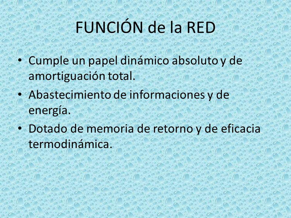 FUNCIÓN de la RED Cumple un papel dinámico absoluto y de amortiguación total. Abastecimiento de informaciones y de energía. Dotado de memoria de retor