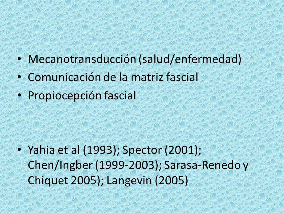 Mecanotransducción (salud/enfermedad) Comunicación de la matriz fascial Propiocepción fascial Yahia et al (1993); Spector (2001); Chen/Ingber (1999-20