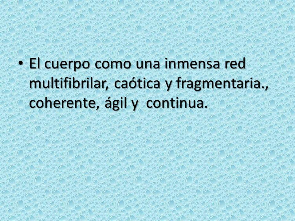 El cuerpo como una inmensa red multifibrilar, caótica y fragmentaria., coherente, ágil y continua. El cuerpo como una inmensa red multifibrilar, caóti
