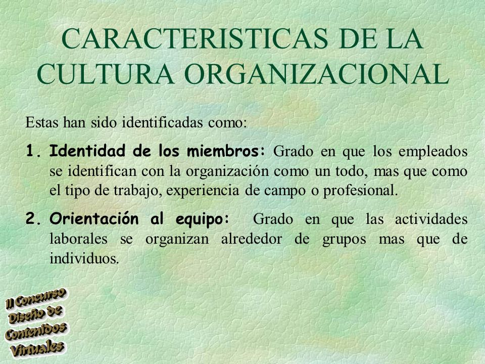 CARACTERISTICAS DE LA CULTURA ORGANIZACIONAL Estas han sido identificadas como: 1.Identidad de los miembros: Grado en que los empleados se identifican con la organización como un todo, mas que como el tipo de trabajo, experiencia de campo o profesional.