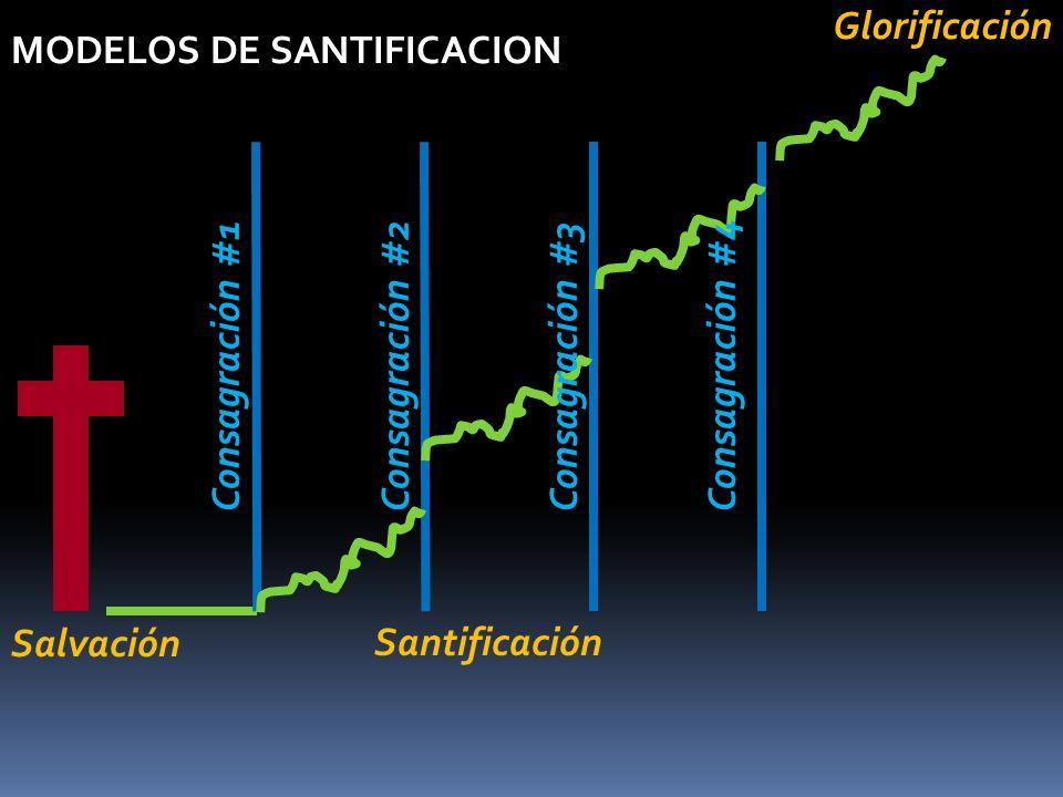 MODELOS DE SANTIFICACION Consagración #1 Salvación SantificaciónGlorificación Consagración #2Consagración #3Consagración #4